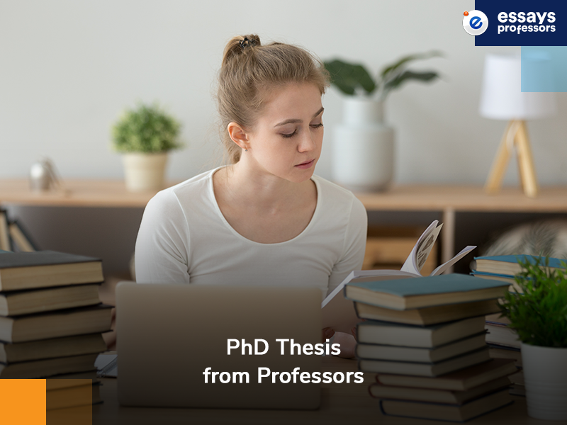 PhD thesis from Professors